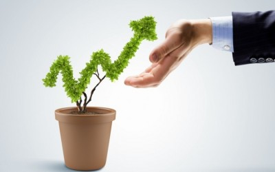 Growing your business sky high with cloud accounting
